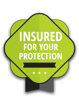Insured for your protection badge