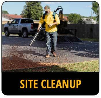 Call-to-action image for site cleanup