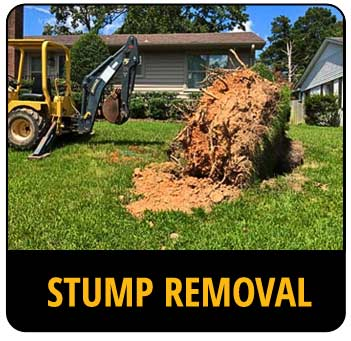 Call-to-action image for stump removal